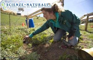 Studiando il suolo potremo prevedere il futuro dell'atmosfera terrestre