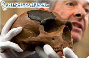 Neanderthal e Homo Sapiens vivevano in pace