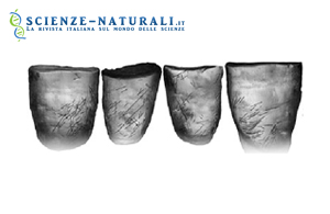 Conferme sui Neanderthal: erano destrìmani e sapevano parlare