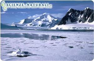 Artico e Antartico. Poli opposti, anche nelle tendenze