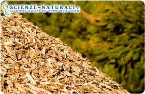 Biomassa tracciabile, biomassa di qualità