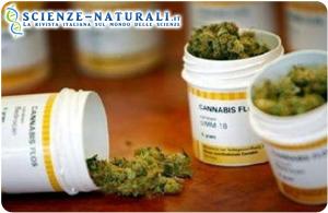 Riconosciuta con decreto l'efficacia dei farmaci a base di cannabinoidi