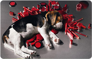 Niente più cosmetici…per gli animali