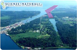 Canale di Panama e riforestazione: in competizione acqua, carbonio e legno