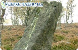 Un monolite di 4000 anni fa indica l'antico percorso del Sole sull'Inghilterra