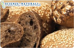 Fibre alimentari contro malattie cardiovascolari e diabete