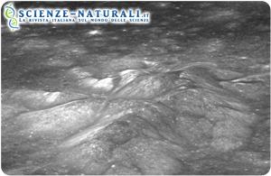 Acqua di origine vulcanica sulla superficie della Luna