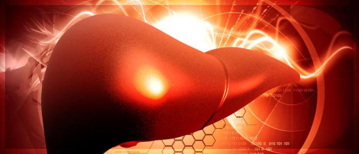 Convertire le cellule grasse in cellule epatiche è possibile
