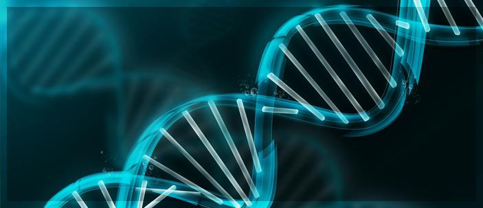Ripensare il DNA spazzatura: nuove scoperte sul DNA noncoding