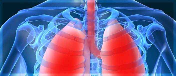 Scoperto un recettore degli odori nei polmoni