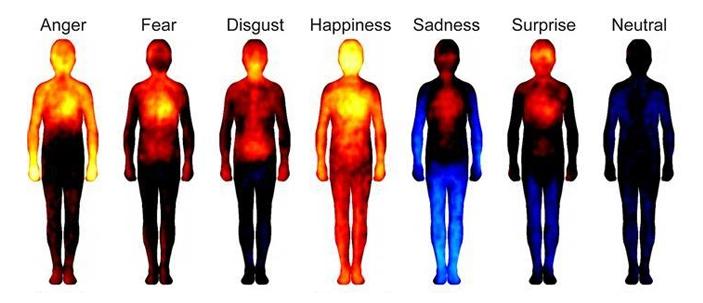 Come sono mappate le emozioni nel corpo