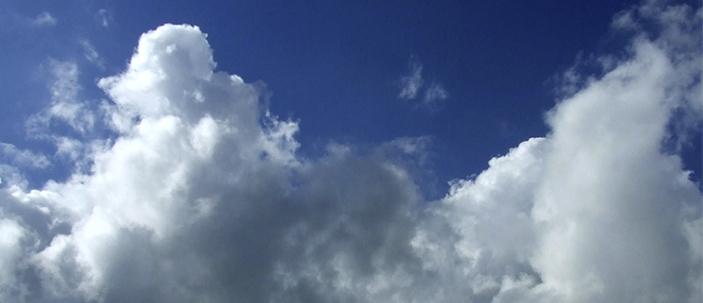 Nelle foreste l'origine della formazione delle nuvole?