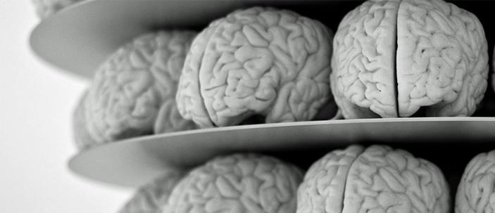 Marketing: tutto parte dal cervello