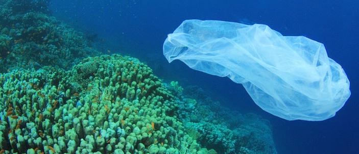 Si riduce l'isola di plastica del Pacifico.