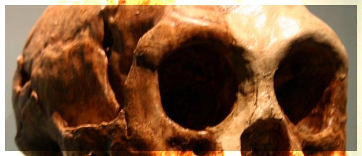 Homo floresiensis: non una specie a sé, ma un sapiens affetto dalla sindrome di Down