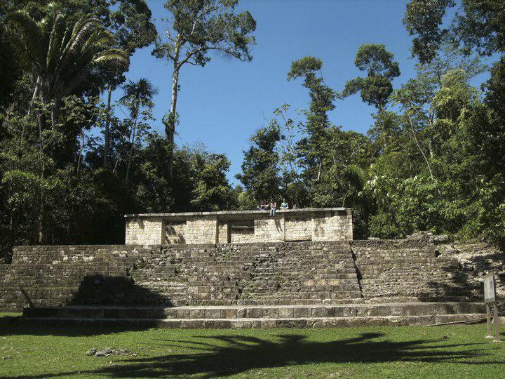 Ceti e città dei Maya identificati da uno studio di ossa animali