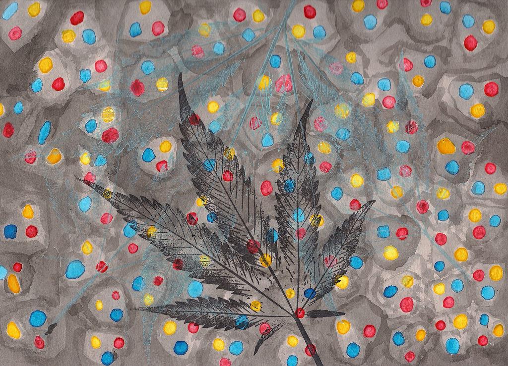Epilessia: cura possibile dalla cannabis