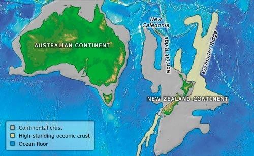 Ritorno da Zealandia, il continente perduto