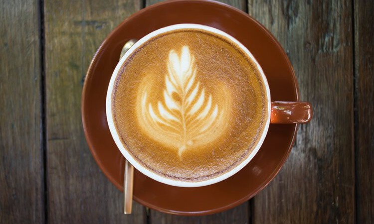 Influenza del caffè sul metabolismo degli steroidi e dei neurotrasmettitori legati alla cannabis